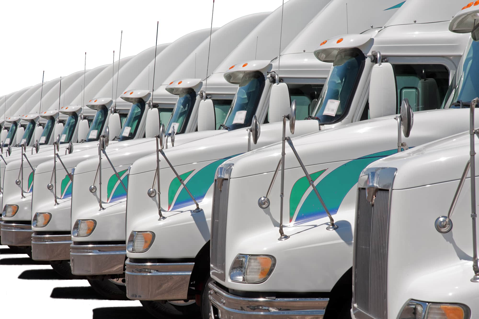 Professional Freight Transport
